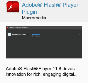 Adobe® Flash® Player Plugin